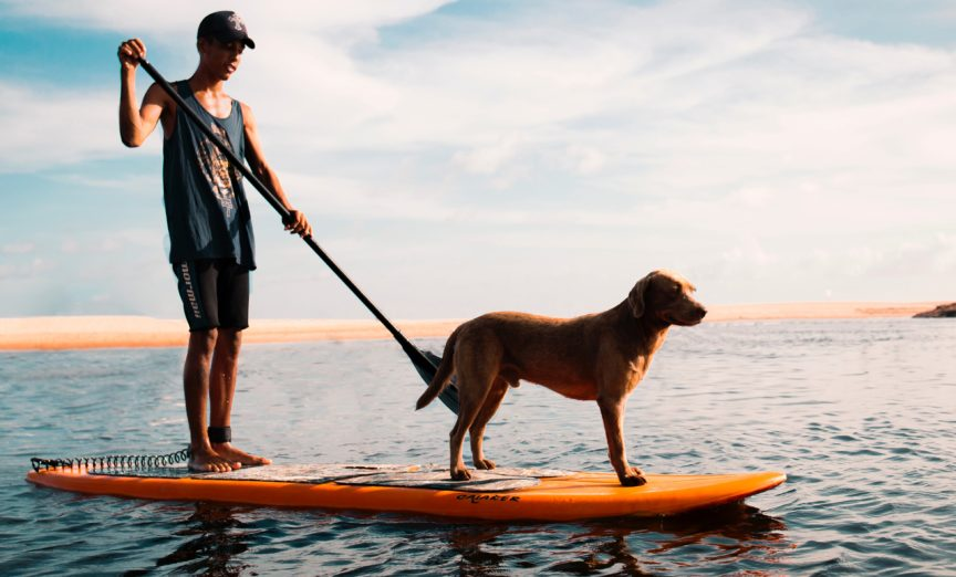 Pros and Cons of windsurfing on a (inflatable) SUP board